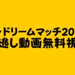 ザ・ドリームマッチ2020 見逃し動画無料視聴