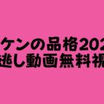 ハケンの品格2020 見逃し動画視聴