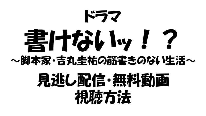 書けないッ!? 見逃し配信動画を無料視聴する方法.jpg